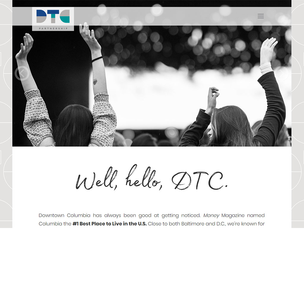 DTC Partnership website screenshot